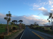 Driving to Muriwai Beach, NZ
